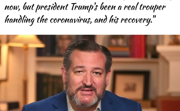 """Ted Cruz Warns That Election Day Could Be A """"Bloodbath Of Watergate Proportions"""" If President Trump Wasn't ATrouper"""
