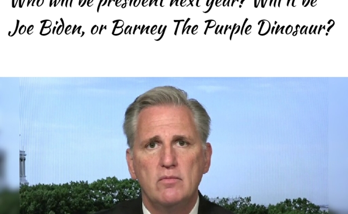 """GOP House Leader Refuses To Acknowledge Biden Victory: """"It May As Well Be Barney The PurpleDinosaur"""""""